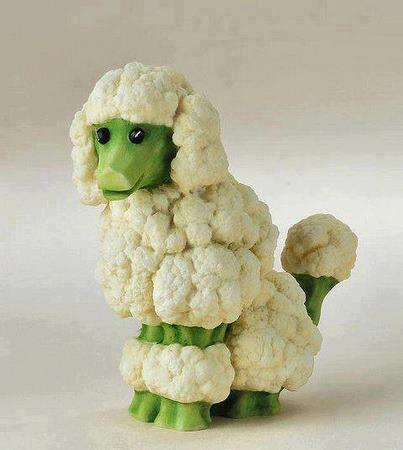 cauliflower-poodle-sculpture