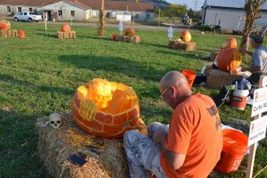 Professional artist Curtis May of Pennington carves his 2015 aMAZing Pumpkin
