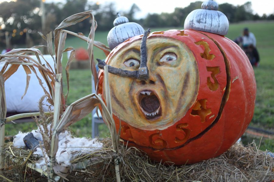 Hopewell Valley Arts Council's aMAZING 2015 Alarm Clock Pumpkin by Aleece David and Carol Snyder