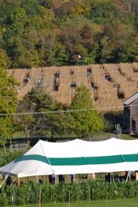 Howell Farm Corn Maze Aerial View