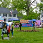 Hopewell Valley Arts Council at Pennington Day 2015