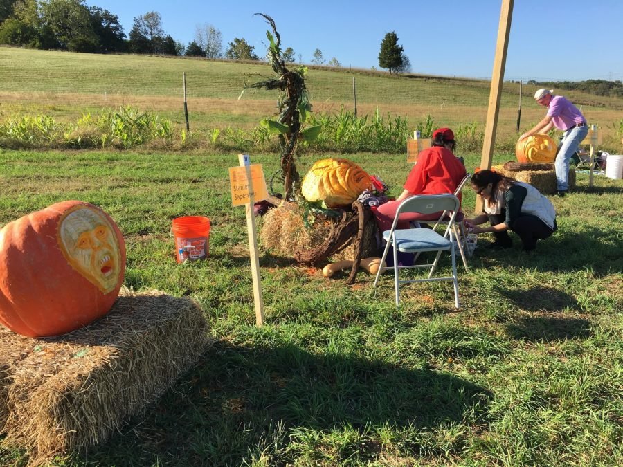 Hopewell Valley Arts Council's aMAZing Pumpkin Carve Carve Day 2016