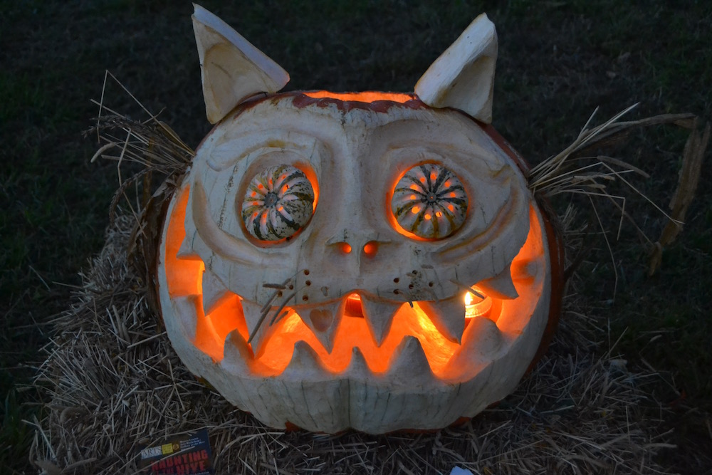 Hopewell Valley Arts Council Announces Third Annual Amazing Pumpkin Carve