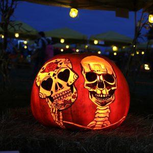 HV Arts Pumpkin Carve Pumpkin by Michael Davies