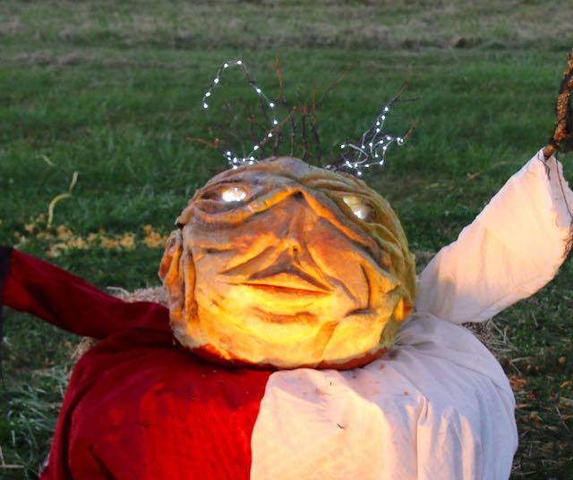 HV Arts Council DavisThomas Pumpkin