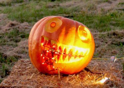 Pumpkin No. 38 Alyssa Staffin