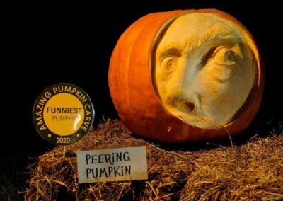 HV Arts Council CMayPumpkin