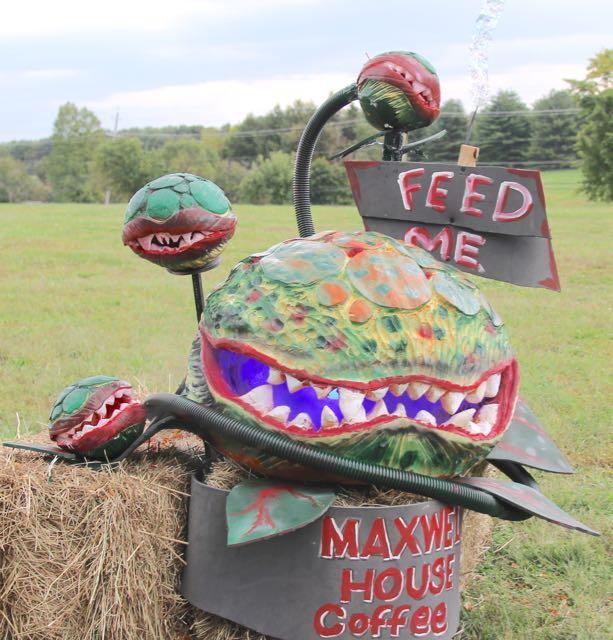 HV Arts Council Yeh Pumpkin