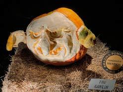 HV Arts Council Doug May Pumpkin