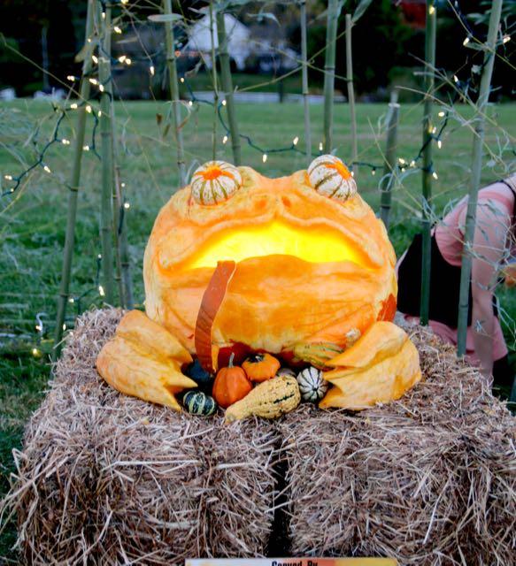 HV Arts Council DeeringWang Pumpkin