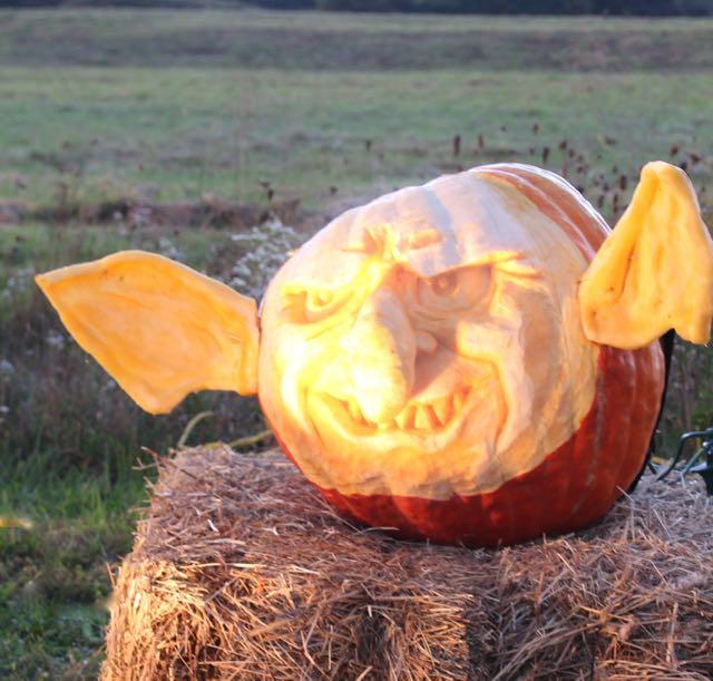 HV Arts Council DMay Pumpkins