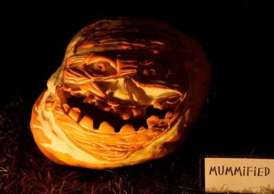 HV Arts Council Fabritz Pumpkin