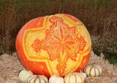 Pumpkin No. 16 Ilyssa Rodriquez