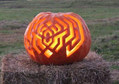 Pumpkin No. 36 Jeremy Legge
