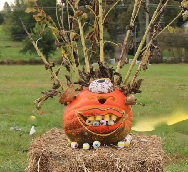 HV Arts Council Walker Pumpkin