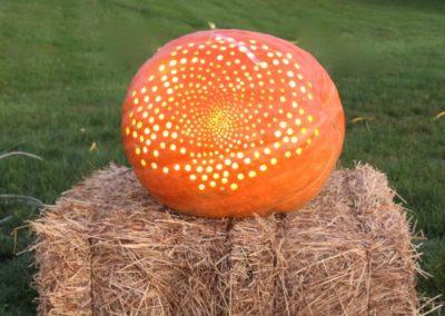 Pumpkin No. 33 Kandiner & Cresson