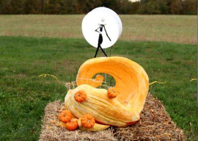 Pumpkin No. 8 Lori Johannson