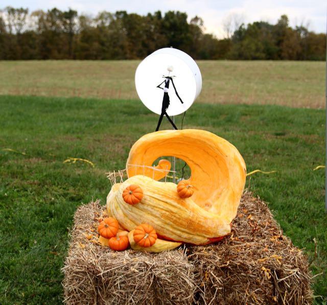 HV Arts Council Johannson Pumpkin