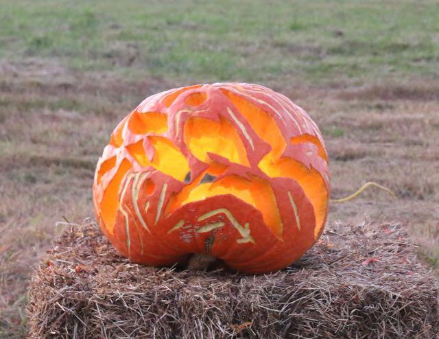 HV Arts Council Sel Pumpkin