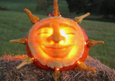 Pumpkin No. 37 Sarah Bernotas