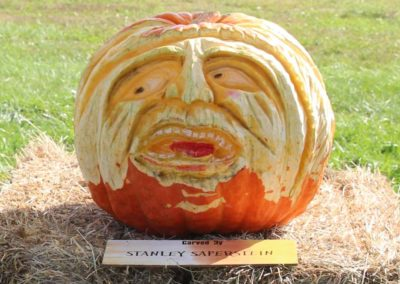 HV Arts Council Saperstein Pumpkin
